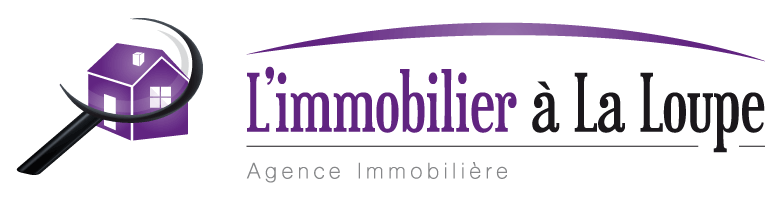 immobilier 28